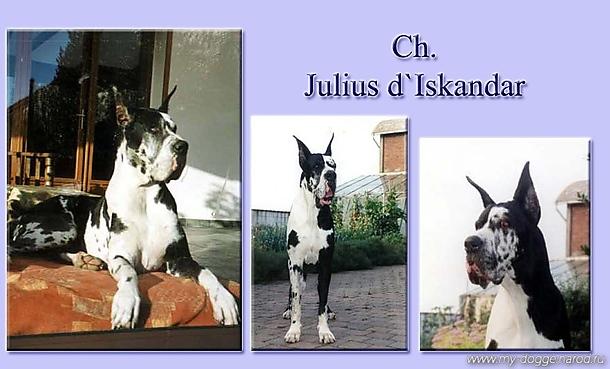 Julius d'Iskandar